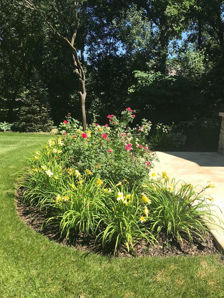 Walkway - Plants (2)